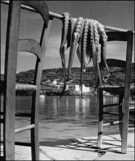 Octopus, Ionian island of Corfu, Greece, 1938 © Herbert List / Magnum Photos
