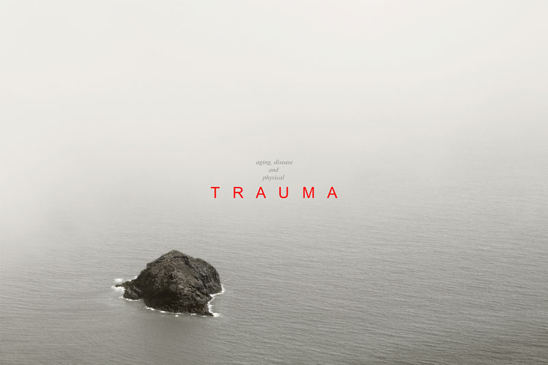 Trauma, Pino Torinese 2014 © Pierluigi Fresia